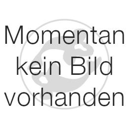 Genesis Edelstahl Ansaugkorb für Blue Stream 10.000 und 12.000
