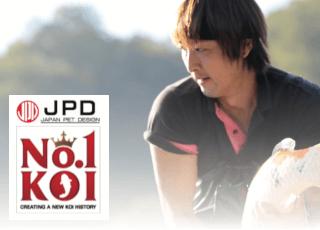 JPD - hochwertiges Koifutter